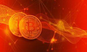 Krypto bei Bitcoin Evolution